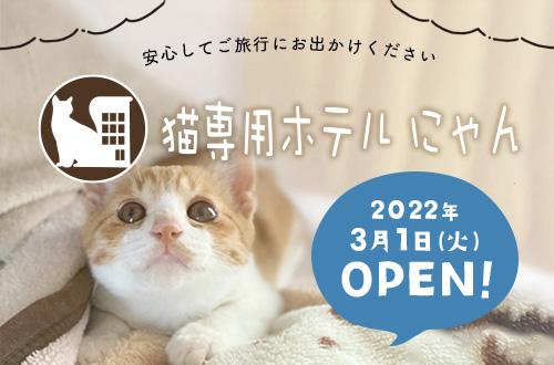 ネコちゃん専用ペットホテル